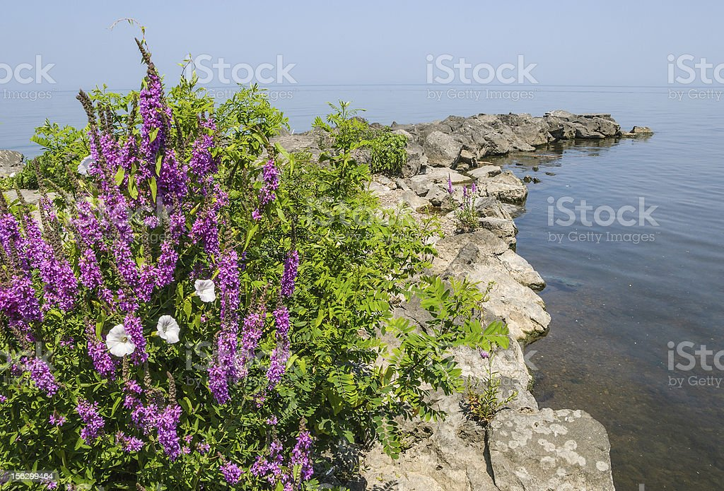 Rocky Pier in Lake royalty-free stock photo