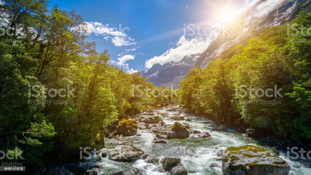 Rocky river landscape in rainforest, New Zealand stock photo