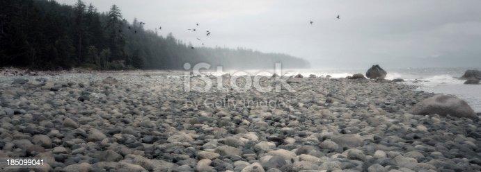 istock rocky shore banner 185099041