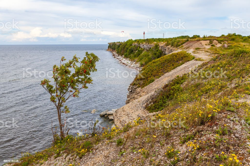 Rocky shore of Baltic sea. Northern Estonia. royalty-free stock photo