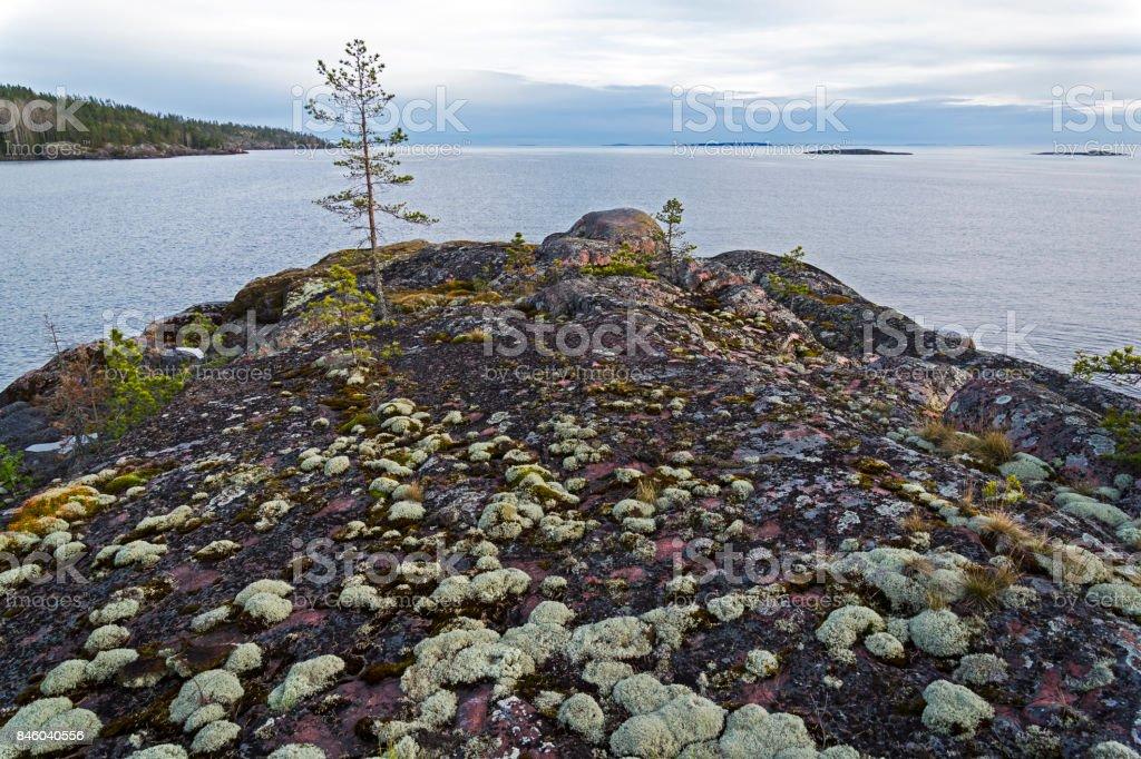 Rocky shore of Lake Ladoga. stock photo