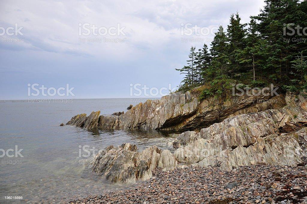 Rocky shore auf Grand Manan – Foto