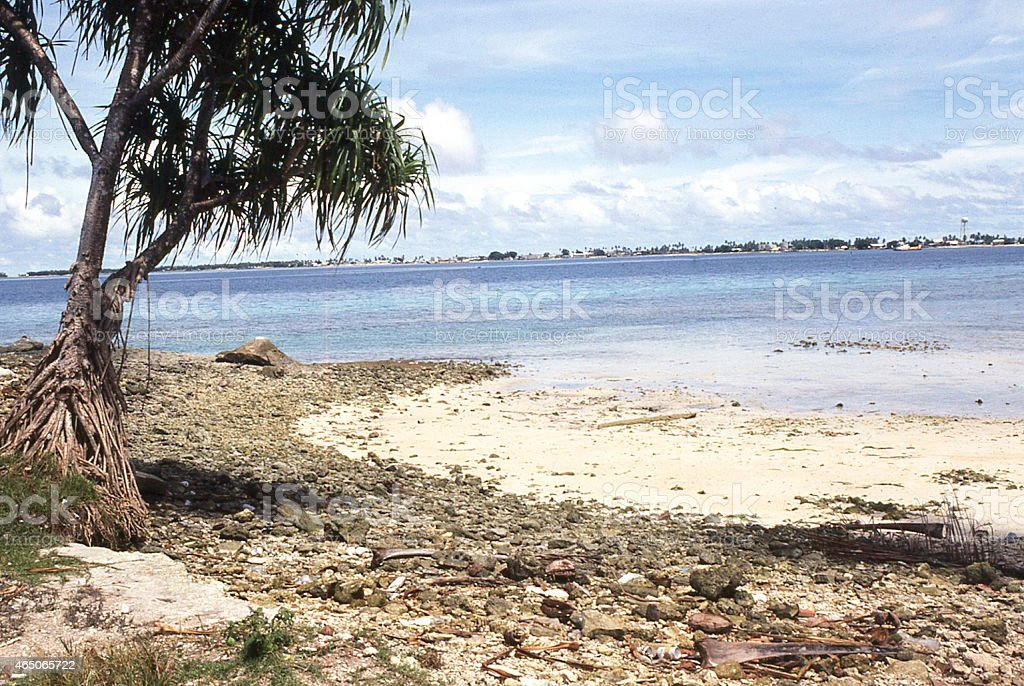 Rocky Shoreline of exposed coral at lowtide Majuro Marshall Islands stock photo