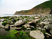 A rocky moss covered shore in the foregound. The grand cliffs of the Big Sur coast in the background.