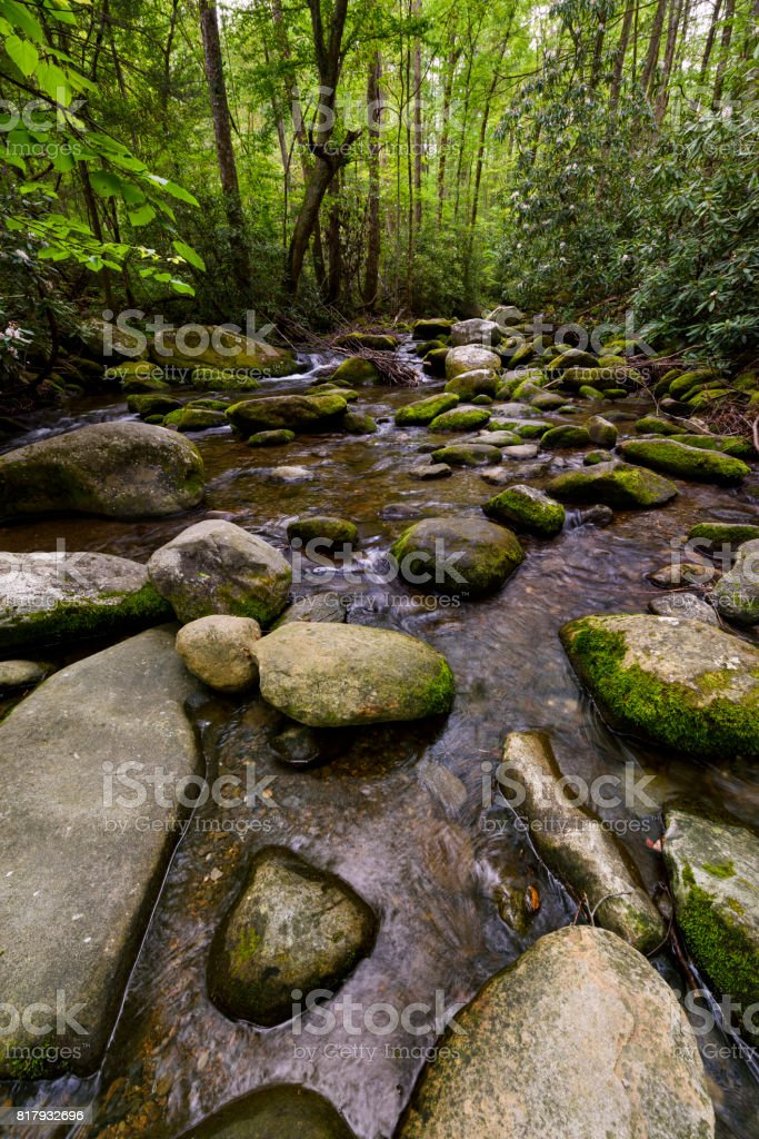 Rocky Stream in Early Summer stock photo