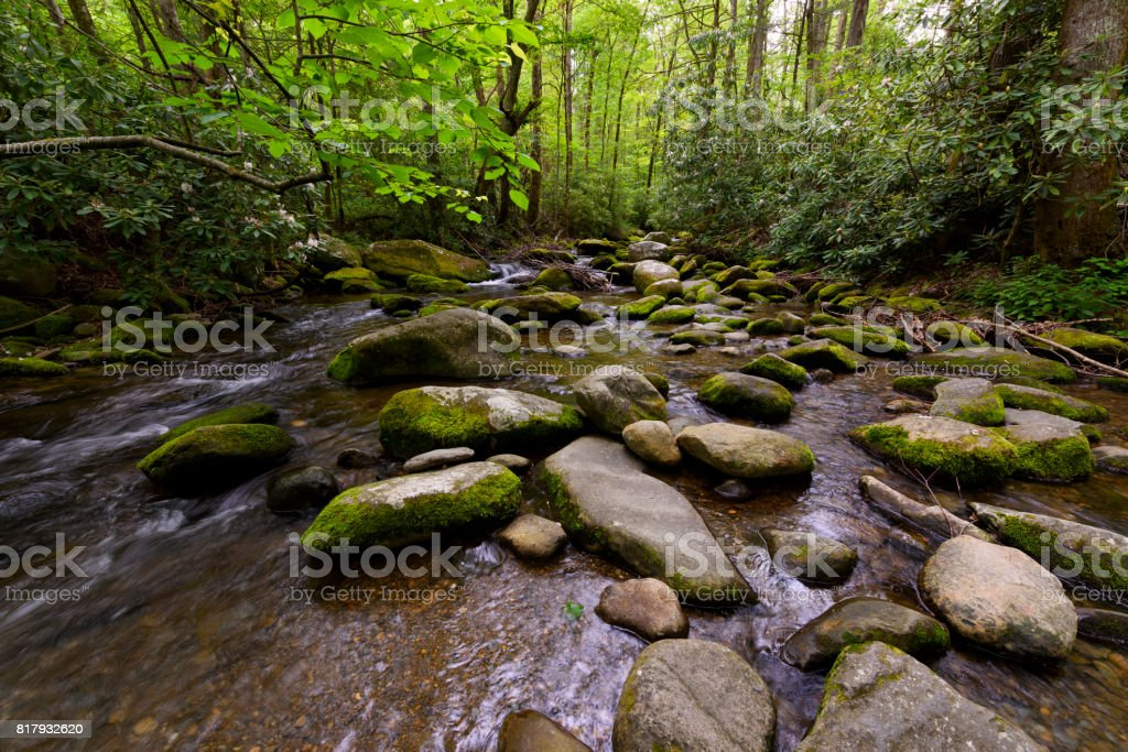 Rocky Stream in Smoky Mountains Forest stock photo