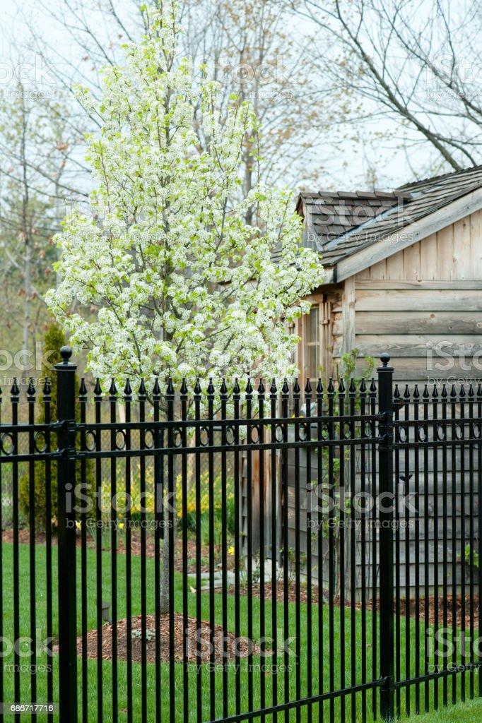 Rod Iron Fence – Foto