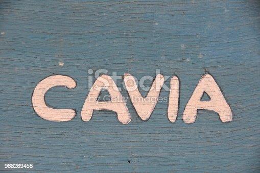 CAVIA- SIGN