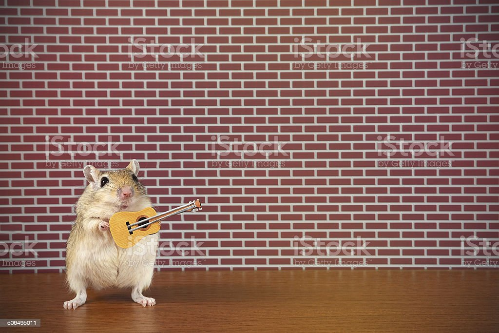 Rodent Rockstar royalty-free stock photo