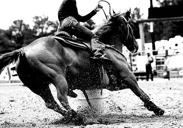 Rodeo Barrel Racing Closeup (BW) stock photo