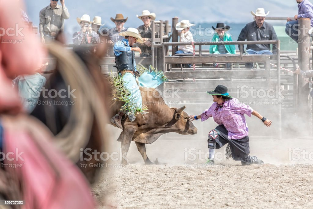 Rodeo clown touches a bull during a bull riding competition at a rodeo stock photo