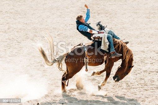 Cowboy riding horse at rodeo arena