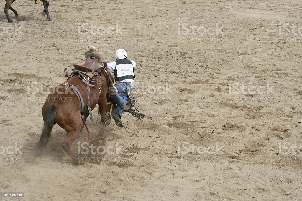 rodeo cowboy and horse royalty-free stock photo