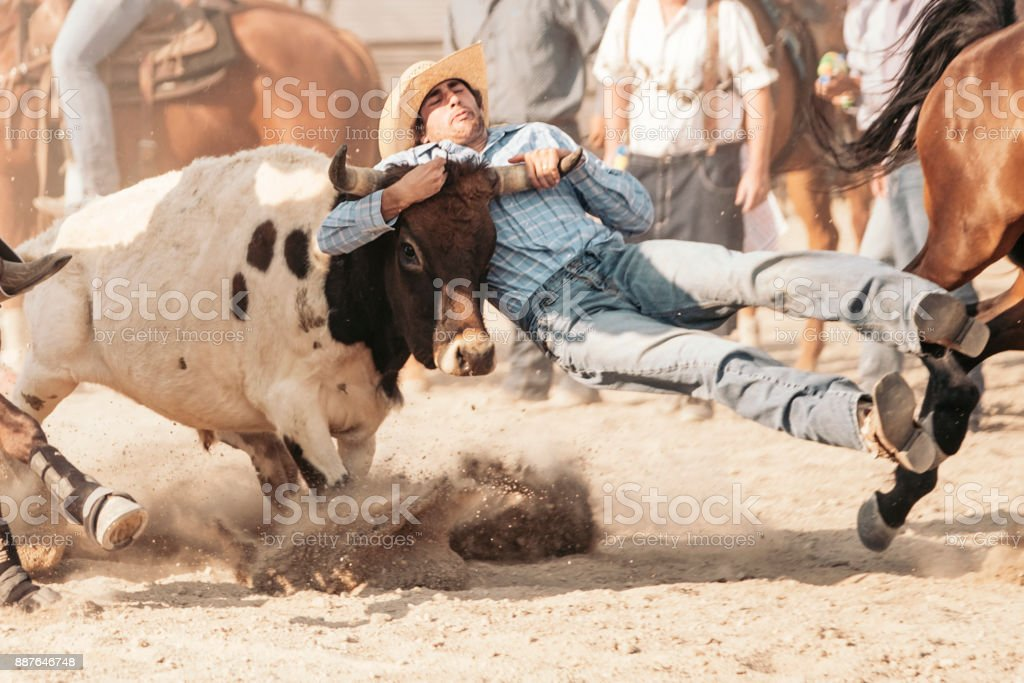 Rodeo Cowboy in Utah stock photo