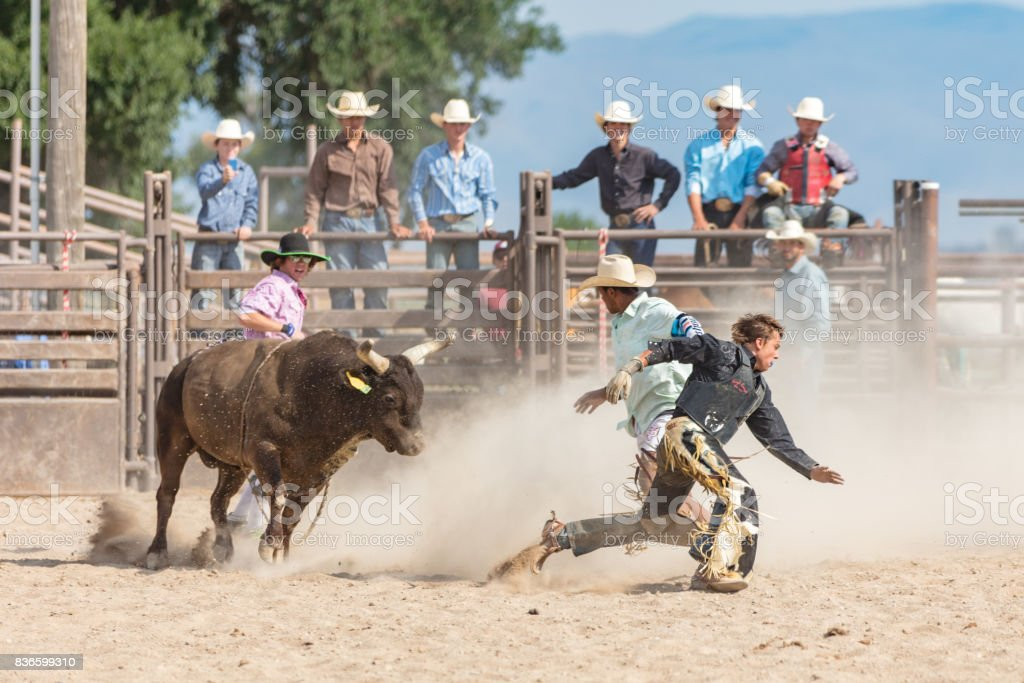 Rodeo Event Bull Chasing Cowboy USA stock photo