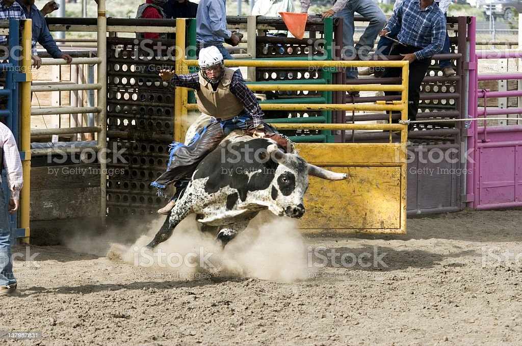 Rodeo Photo Bucking Bull and Teenage Rider stock photo