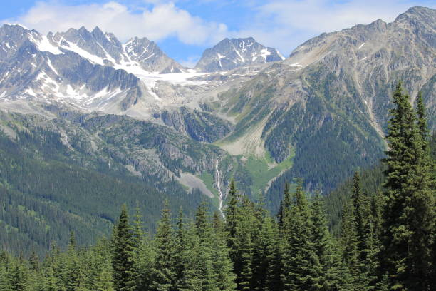 rodgers pass in the summer - british columbia glacier national park stock pictures, royalty-free photos & images