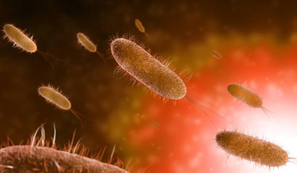 rod-shaped bacteria background stock photo