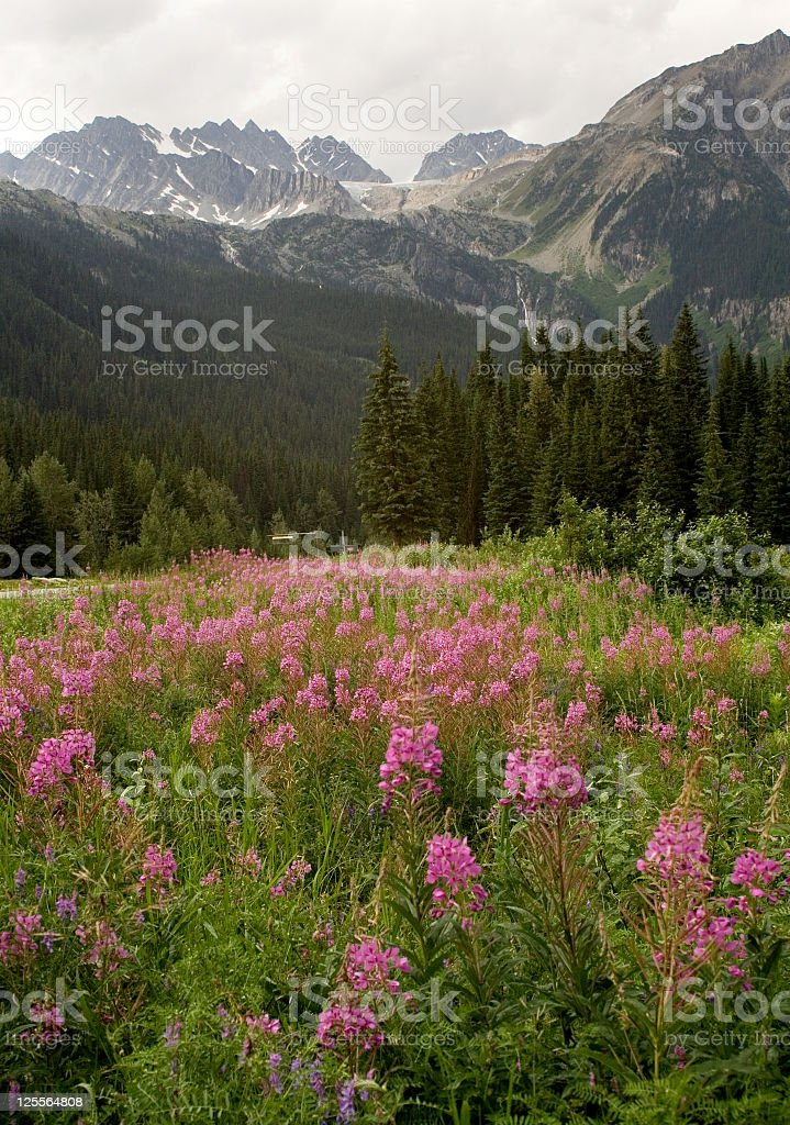 Rogers Pass Under Mountain Clouds stock photo