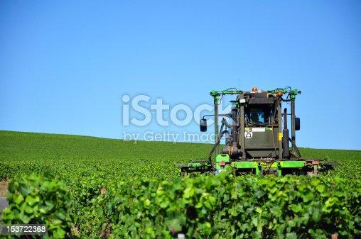 istock rognage des vignes 153722368