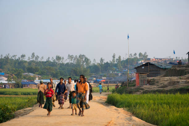 Rohingya refugees in Bangladesh Rohingya Muslim refugees walk on a road through a rice field at Jamtoli Refugee Camp in Bangladesh (October 26, 2017) rohingya culture stock pictures, royalty-free photos & images