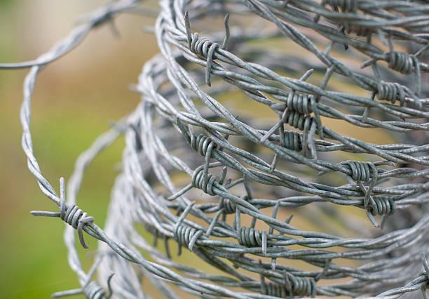 Rollo de alambradas para valla protectora - foto de stock