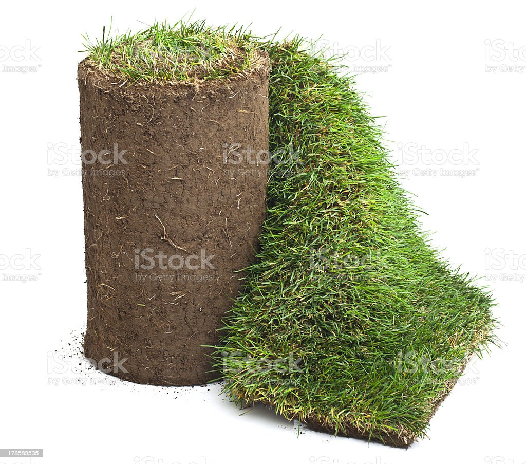 Roll of Sod stock photo