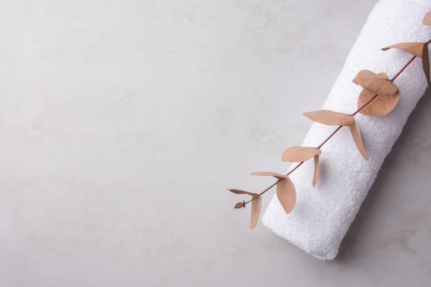 Gerollt eisern sauber weiß flauschige Frottee Handtuch Eukalyptus Zweig auf Pastell grau Stein Hintergrund. Minimalistischen skandinavischen Stil. Frauen Babyhygiene Wäsche Körperpflege Wellness Wohlbefinden Konzept. Kopierraum – Foto