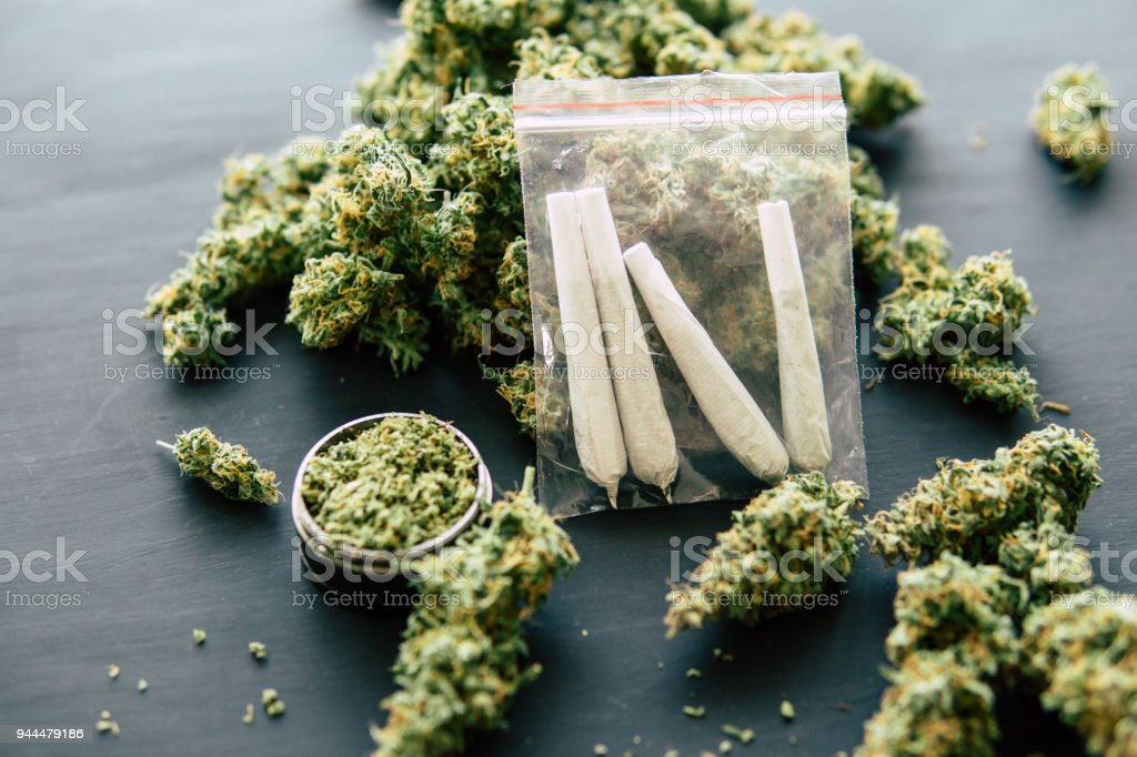 rolled jamb joint in the hands of a man marijuana weed and grinder for weed, concepts of smoking marijuana, dark background close up, top view stock photo