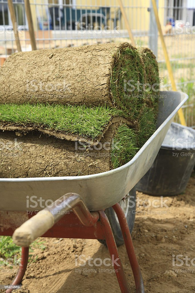 Rolled sod royalty-free stock photo