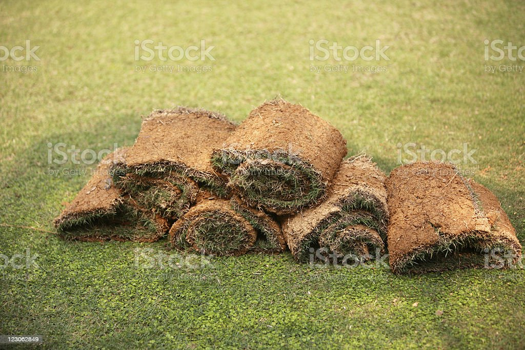 Rolles of garden turf royalty-free stock photo