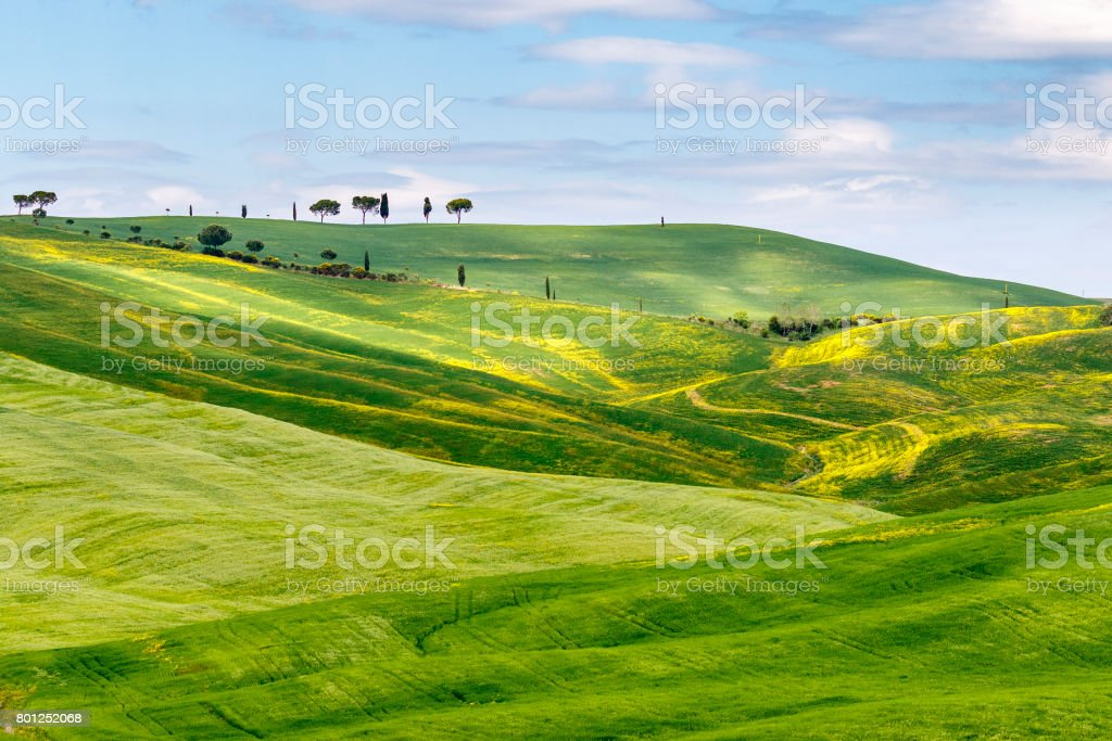 Rolling agricultural landscape with sunspot on the fields stock photo