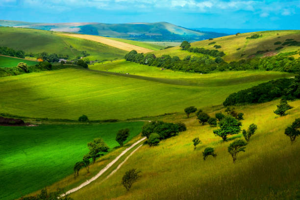 glooiend landschap in de zomer sussex engeland - east sussex stockfoto's en -beelden