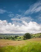 Rolling Countryside View