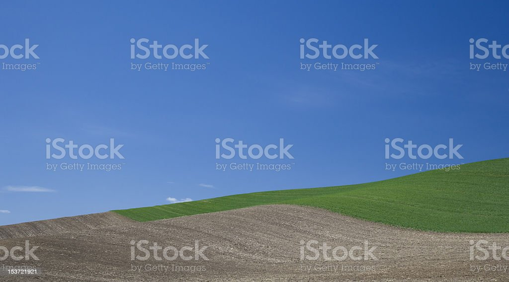 Rolling Crop Fields of the Palouse stock photo
