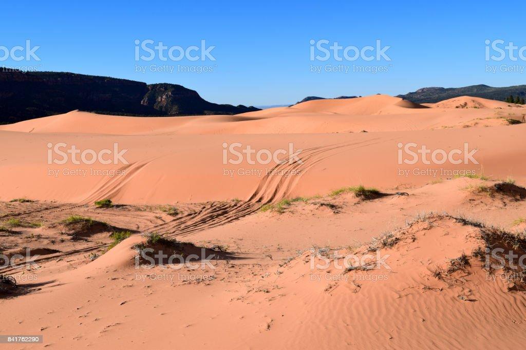 Rolling Dunes stock photo