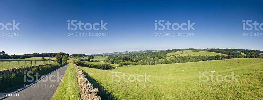 Rolling farmland and rural road panorama. stock photo