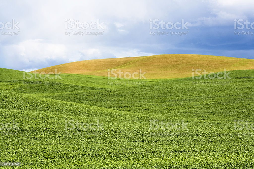 Rolling Farmland stock photo