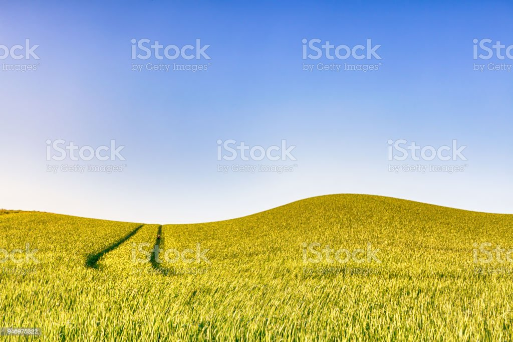 Rolling farmland with track and clear blue sky stock photo