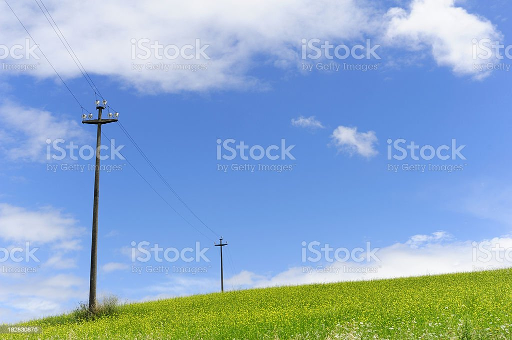 Rolling Field with Telegraph Poles on Sunny Day royalty-free stock photo