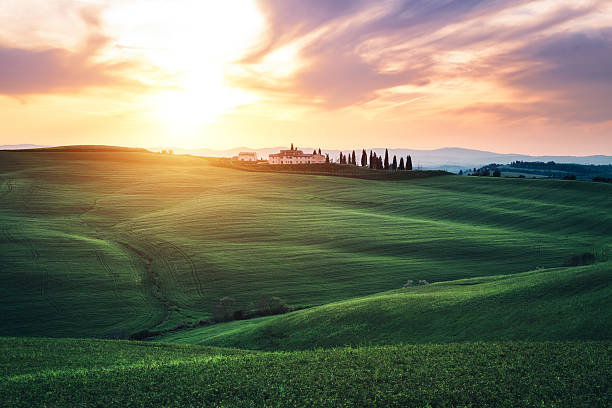 Rolling Fields Of Tuscany At Sunset stock photo