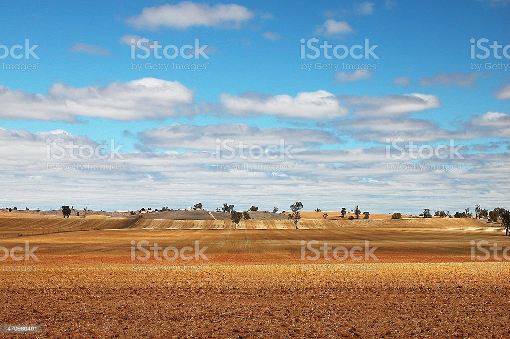 Rolling Fields royalty-free stock photo
