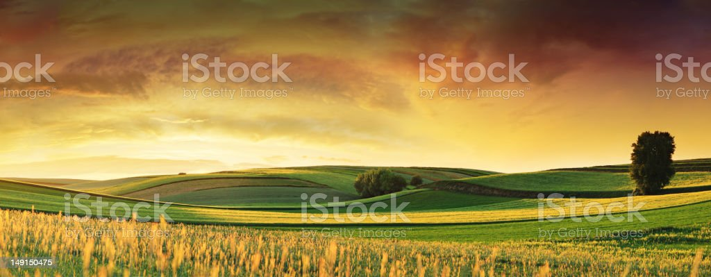 Rolling Fields - Sunset Landscape Panorama - Royalty-free Agricultural Field Stock Photo