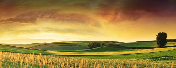 Rolling Fields - Sunset Landscape Panorama stock photo