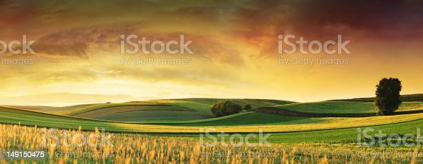 Rolling Fields Sunset Landscape Panorama Stock Photo - Download Image Now