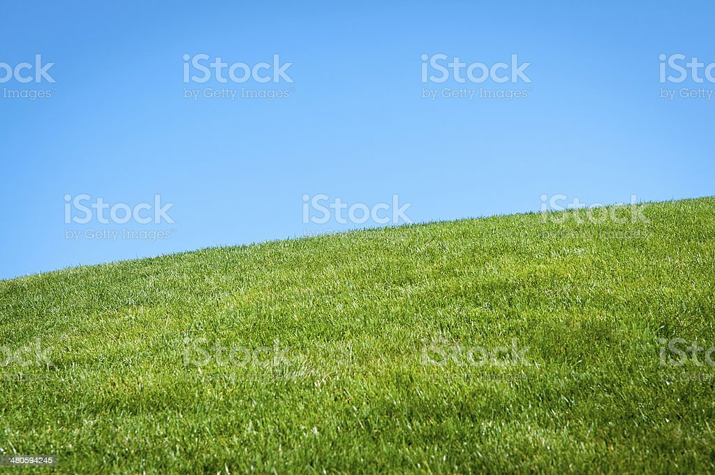 Rolling Grass Hill royalty-free stock photo