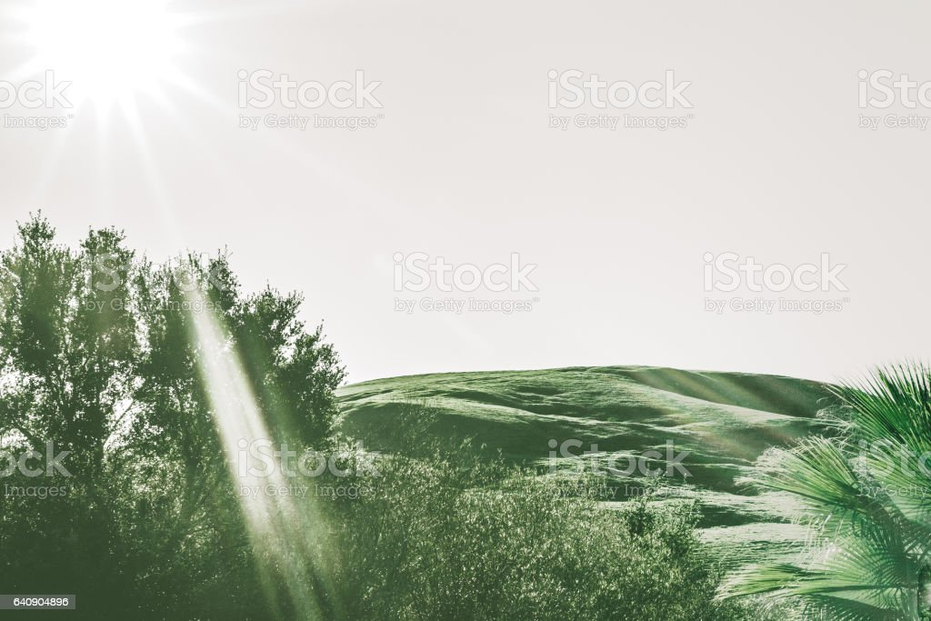 Rolling Hills of Harmony, California under white sky, sun shining and...