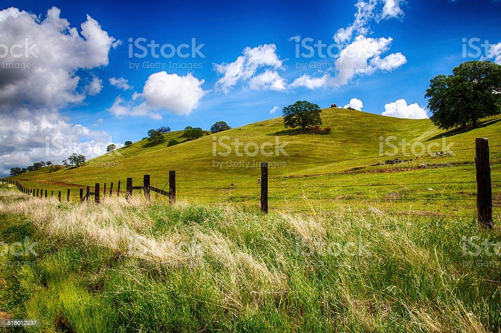 Verdes colinas - foto de stock