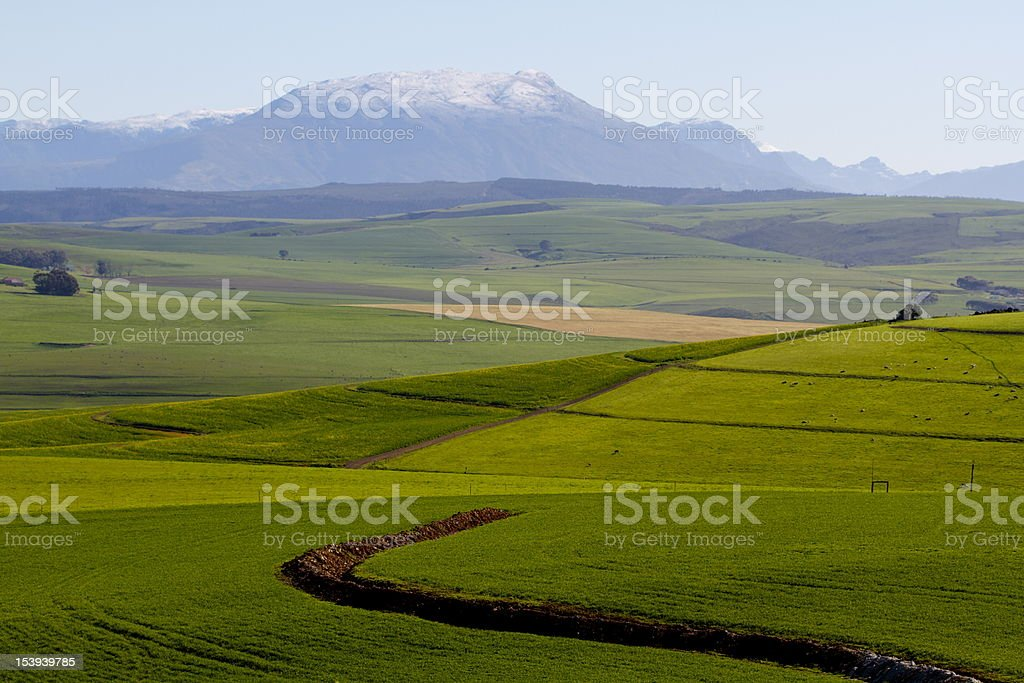 Rolling Green Hills with Snow Capped Mountains in Background stock photo