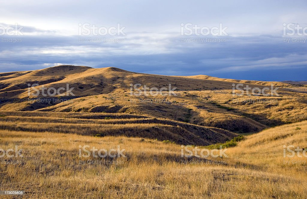Rolling Hills and Grasslands of Montana at Dawn stock photo